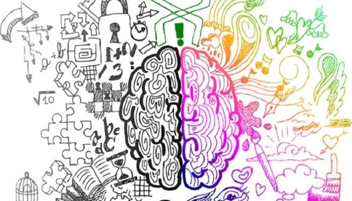 funzionamento-cervello